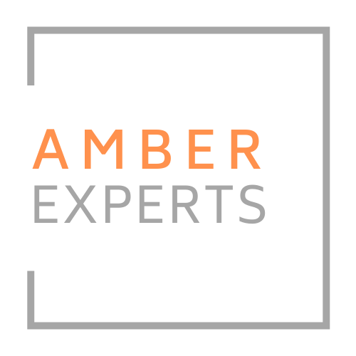 Amber Experts Panel